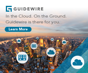 Guidewire MR